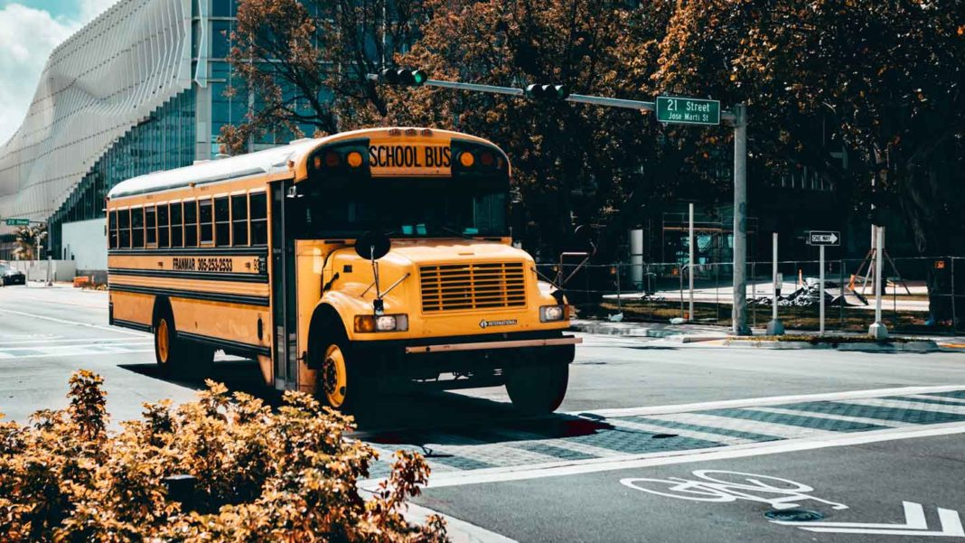Everything-You-Need-to-Know-About-School-Bus-Rental-on-writercollection